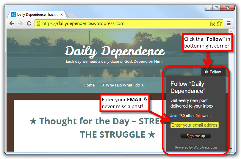 To Follow Daily Dependence Blog