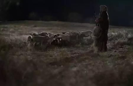 15 - Daily Dependence - Shepherd in Field